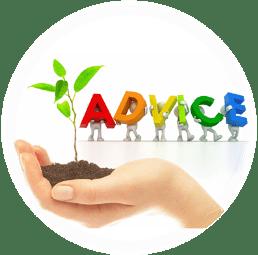 Module 12: Business Advice